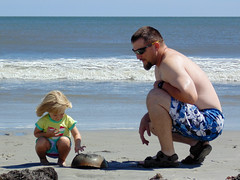 John, Pyper, and the Horseshoe Crab Part 2 (86thetomato) Tags: ocean blue portrait sky people beach water john person newjersey sand waves wildlife bluesky atlantic niece shore atlanticcity jersey jerseyshore southjersey horseshoecrab daddydaughter pyper