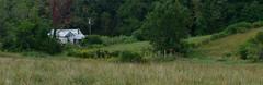(Rszend) Tags: trees farm northcarolina historic pasture