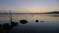 P1070388 (:-:claudiotesta:-:) Tags: alba acqua sul umbria trasimeno lagotrasimeno castiglionedellago romamor2014agosto