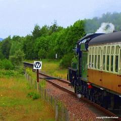 Kinneil Halt (B4bees .(2m views)) Tags: travel green heritage scotland scenery volunteers railway 440 coaches boness morayshire srps kinneil no246 visiteastscotland