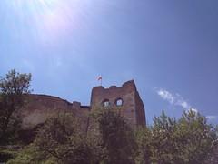 Zamek Czorsztyn (1)