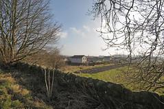 Dunfermline West 14