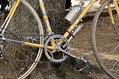 L'Etrusca 2013 / Bolgheri (Arnaud Bachelard) Tags: italy white bike vintage cycling strada italia tuscany bici roads bianca toscana toscane strade italie vlo bibbona carducci epoca bianche cecina cyclisme bolgheri etrusca castagneto