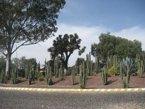 mexiko_city 106