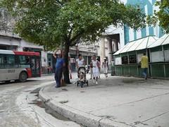 METROBUS,  2008 (ROGALI) Tags: cuba monte habana chinesebus belascoain cubanbus yutongbus guaguasdecuba guaguaschinas