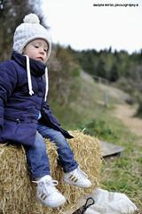 Nerea (dwayne miras) Tags: winter lana colors girl hat horizontal outdoors happy kid gorro seat catalonia nia campo catalunya sombrero montaa sant paja catalua woollen bambina sentada hilari sacalm horizontalshaped