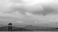 323 - 3 seagulls (Ata Foto Grup) Tags: bridge blackandwhite bw cloud bird birds turkey cloudy geometry seagull gull türkiye lifeguard istanbul lifeguardtower köprü hava bulut kuş martı küçükçekmece geometri siyahbeyaz kuşlar menekşe martılar korkuluk avcılar cankurtaran kapalı bulutlu kapalıhava tünemiş cankurtarankulesi köprükorkuluğu