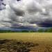 Columbia Wildlife Management Area (Revisit) (4)