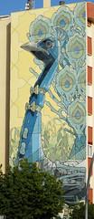 Pavo Real (TerePedro) Tags: mural cdiz ariz pavo sanlcar
