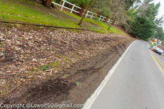 Accident Unsung Heros 24_MG_1766.jpg (orig_lowolf) Tags: accident canoneos5dmarkii carwreck centurylink flickr lakeoswego march2017 oregon pge phone sigma247028ex unsungheros