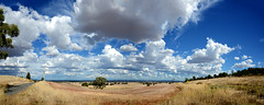 Dookie Panorama (Ptolemy the Cat) Tags: dookie goulburnvalley landscape clouds panorama nikond600 nikonf355628300mmlens mountmajor victoria australia