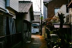 Alley (yasu19_67) Tags: alley sunlight atmosphere photooftheday film filmism filmphotography analog leica summicron50mmf2 50mm fujifilm c200 osaka japan