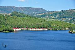 Barra do Miño (***REGFA***) Tags: rio miño linea monforte vigo madera tren train comboio euro4000 6000