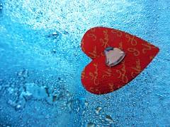 festeggiamo l'amore ogni giorno :-) (eying2012) Tags: cuore mm macromonday ciprovo