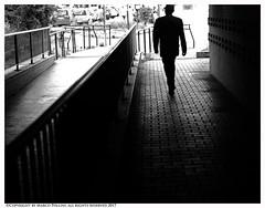 Back home (Pollini Photo Laboratory) Tags: marcopollini polliniphotolabcom fotografiaurbana streetphotography leica leicam8 monocrome blackwhite bianconero rome italy m8