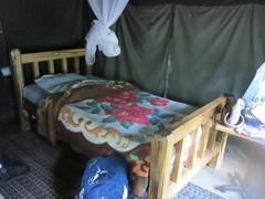 Tent  (lightstars) Tags: africa kenya masaimara