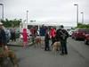 DeerIsland06-03-2012001