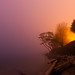 Kitsilano Shore, foggy