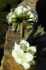 EP032214 Bridal Bouquet and Toss (elitedesignsbydaphne) Tags: bouquet callalily corsage olivegreen boutonniere