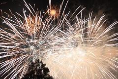 Fireworks West Midands Safari Park (Duncan-S) Tags: park west fireworks safari midlands kidderminster bewdley november5 2013