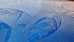Frost on cars, January 2014 (Clive Hicks) Tags: frost fujifilm feathering xs1