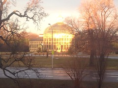 Countdown Conservatory Window View (Graham Coreil-Allen) Tags: sunset architecture nps conservatory baltimore greenhouse vista romantic windowview pastoral sublime sites nofilter rawlings druidhillpark thecountdown urbansublime newpublicsites auchentoroly uploaded:by=flickrmobile flickriosapp:filter=nofilter platzgeist
