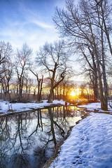 Beaver pond Sunrise (John Andersen (JPAndersen images)) Tags: city longexposure trees winter sky urban white snow calgary clouds sunrise canon reflections river landscape pond day beaver alberta february bowriver pearceestatepark canon6d jpandersenimages canonef2470f28iiusm