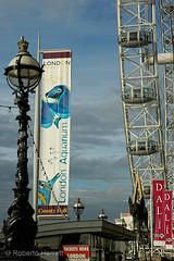 The London Eye Ferris wheel and advertising banners next to County Hall South Bank London UK (Roberto Herrett) Tags: banners flags adverts advertisements advertising streetlamps gas lamps vertical britain british capital cities city england english europe k london u uk unitedkingdom urban modern new spectacular cityscape towns southbankcentre jubileegardens structure attractions destinations famous holidays iconic icons landmarks locations places sights sightseeing tourism tourists travel traveling vacations tourist traveler travelling visit recreation sky waterfront wheels ferris big large huge giant gigantic pods airways blue millennium clouds aquarium dali county hall dramatic pd rherrettflk stockphoto