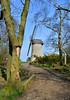 Bidston Windmill (1) (Andrew_D_Hurley) Tags: trees england tree bluesky birkenhead footpath wirral merseyside bidston bidstonhill bidstonwindmill wirralwalk wirrallandmark wirralfootpath bidstonwalk merseysidelandmark