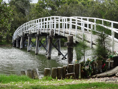 Foot Bridge at Budgewoi (pat.bluey) Tags: bridge little australia newsouthwales 1001nights budgewoi coth fantasticnature flickraward spiritofphotography pathscaminhos 1001nightsmagiccity sunrays5