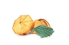 Orange (folding~well) Tags: orange fruit paper origami folding