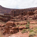 Dentro do Canyonlands