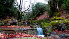Life flows like water... (Michael Kalognomos) Tags: water falls nature river mountain milky efs1018mmf4556isstm landscape life forest potidania greece longexposure canoneos70d trees wideangle