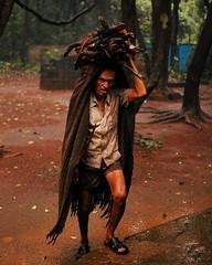 Wood gatherer in monsoon rains (atriray) Tags: hardlife hardrain soaked goa westernghats india monsoon woodgatherer