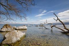 Le Domaine de Rovorée (jean paul lesage) Tags: léman lac lake lacléman yvoire alpes alps hautesavoie france