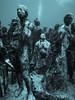 MUSA Musing (altsaint) Tags: 714mm gf1 islamujeres jasondecairestaylor musa mexico panasonic silentevolution monochrome underwater