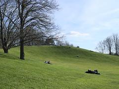 Britzer-Garten_e-m10_1003269326 (Torben*) Tags: rawtherapee olympusomdem10 olympusm25mmf18 berlin neukoelln britzergarten park buckow
