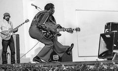 Chuck Berry (stenaake) Tags: chuckberry chuck berry pop rip rocknroll rockandroll legendary american stockholm sweden 1980 june grönalund grönan djurgården
