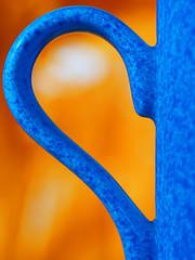 Orange and Blue (Robert Anscombe) Tags: orangeandblue macromondays