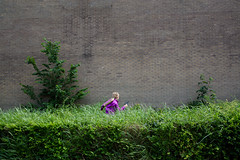 (Peter de Krom) Tags: green girl war gun purple hedge bushes hvh oorlogje