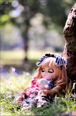 Dreaming alice~* (Suki) Tags: bunny outdoor sleep alice groove classical pullip pullips slepping junplanning classicalalice