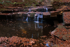 Christman Preserve (rochpaul5) Tags: autumn fall nature water leaves rock creek waterfall nikon kill zoom gorge brook d200 nikkor sedimentary conservancy