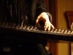 Julien Weiss - Qanun 8 (Aquasabiha) Tags: light shadow music instrument kanun imaret qanun julienweiss