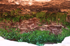 Wadi Rum (JnyAroundTheWorld (#nophotoshop thanks for your co) Tags: nature rock landscape lawrence scenery desert wadirum unesco jordan arabia rum paysage camels wadi jordanie jny lawrencedarabie