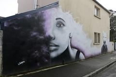 InStreetBrest2014 - 40 (Jepeinsdesaliens) Tags: streetart bretagne brest artinstreet liliwenn crimeofminds