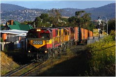 Trains In Tasmania - 2020 Passes Through Chigwell. (Trains In Tasmania) Tags: train gm australia tasmania freighttrain 2020 emd goodstrain diesellocomotive tasrail dclass chigw