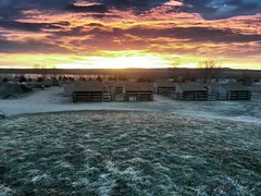 Stable sunrise (Alan Szalwinski) Tags: morning horses sun sunrise landscape colorado cellphone drama stables chatfieldstatepark flickrandroidapp:filter=none