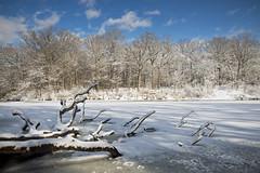 Sterling Winter (baldwinm16) Tags: winter snow nature march frozen illinois il snowylandscape winterlandscape sterlingpond themortonarboretum natureofthingsphotography