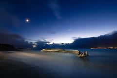 Blue Hour (Philippe POUVREAU) Tags: ocean moon france beach night bluehour serpent loire oeuvre seaserpent marée slowwater estuaire loireatlantique saintbrévin 2013 huangyongping beacheslandscapes saintbrevinlespins serpentdocéan serpentocean