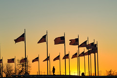 Flags and Sunset (Guilherme Nicholas) Tags: sunset sky orange usa cloud sun man color tree yellow set sunrise person dc washington amazing cityscape silhouettes flags nicholas rise guilherme